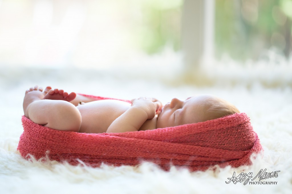 Newborn Photography Benton, AR
