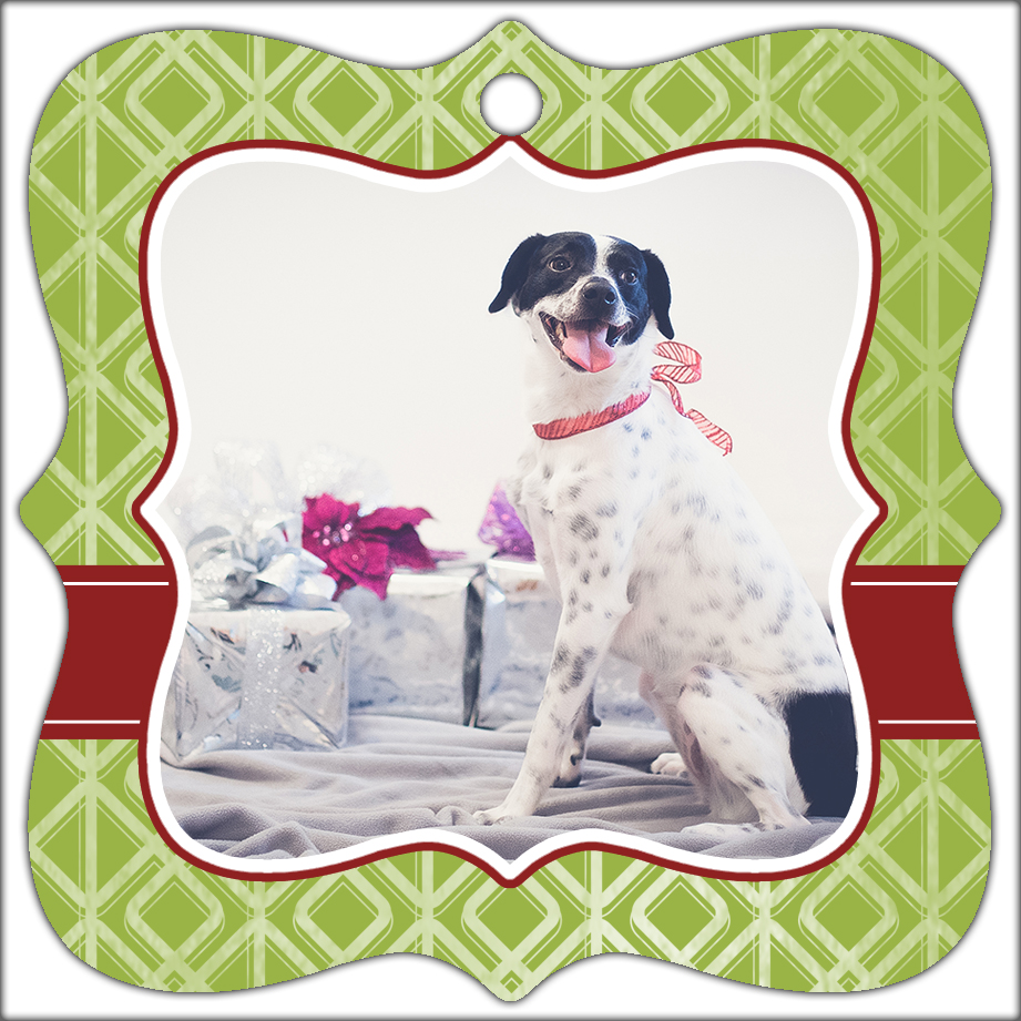 Pet Photography Christmas Ormanents